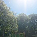 صورة فوتوغرافية لـ Brockhole on Windermere