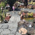 Foto de Jardin de Cactus Restaurant