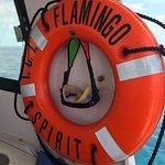 Flamingo Spirit