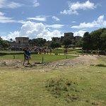 Photo of NS Tours Mexico