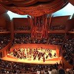 LA Phil Concert Hall - Inside