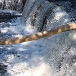 Powerful rushing water of Upper Falls.