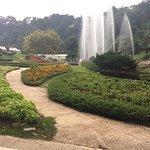 ภาพถ่ายของ สวนพฤกษศาสตร์สมเด็จพระนางเจ้าสิริกิติ์
