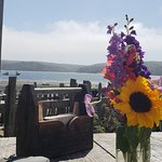 Picnic table overlooking the bay at Hog Island