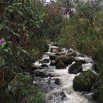 San Vicente Reserva Termal Φωτογραφία