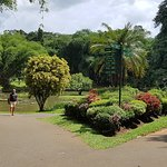 Photo de Royal Botanical Gardens