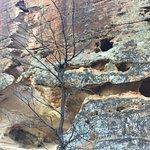Foto de Sandstone Caves