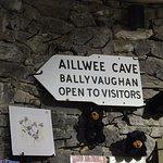 Foto de Lally Tours - Day Tours