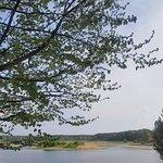 Фотография Roztocze National Park