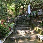 Le scalinate d'ingresso