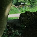 Foto de Middleton Top Countryside Centre