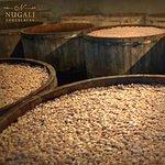 Nos tanques de fermentação o cacau desenvolve sabores e aromas, sendo acompanhado diariamente.