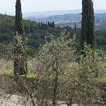 Foto van Osteria di Fonterutoli