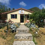 Caribbean Place Donde Martin Photo