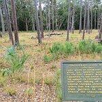 Bilde fra Fort McAllister State Park