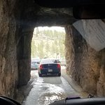 Needles Highway Resmi