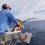 Foto de Mark the Shark