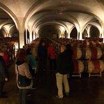 Lafitte Wine Tours Bordeaux
