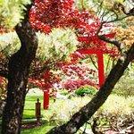 Foto de Schedel Gardens and Arboretum