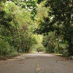 Photo of Parque Nacional Natural Tayrona