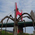The spider and bridge
