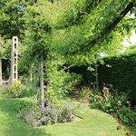 صورة فوتوغرافية لـ حديقة ريجينت