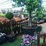 ภาพถ่ายของ Bents Garden & Home
