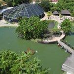Vista do Parque do alto da Torre de Belém
