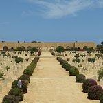 صورة فوتوغرافية لـ El Alamein War Cemetery