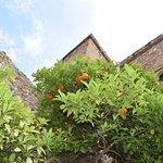Photo of Alcazaba