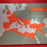 Museum insights