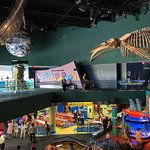 Photo of Ripley's Aquarium Of Canada