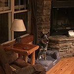 Lake Forest Luxury Log Cabins-billede