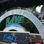 Rainforest Park Foto