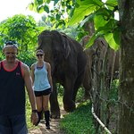 Two gentle giants following us through the jungle