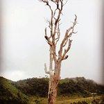 Horton Plains National Parkの写真
