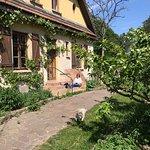 Entspannte Tage im Forsthaus Neustrelitz