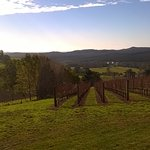 clover hill wines finest vineyard in Tasmania