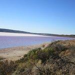 Pink Lake照片