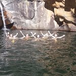 Cooling off at the Rust & Vrede Waterfall
