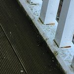 More pics of filthy balcony. Uncared for and dirty. Slippery. Hazardous