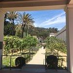 Photo de The Getty Villa