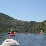 A typical view from the kayak on the Douro