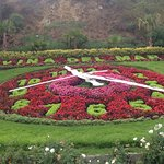 Billede af Flower Clock (Reloj de Flores)