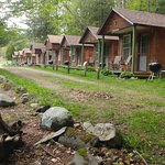 Pine Crest Motel and Cabins Picture