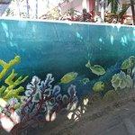 Mur joliement décoré face à la plage