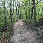 ภาพถ่ายของ Sanctuary Woods