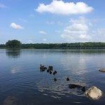 Gray's Lake Park照片