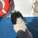 Bella Jane Boat Trips & AquaXplore照片