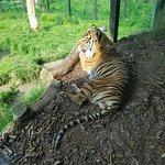 Photo of ZSL London Zoo